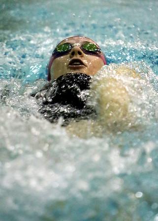 SNHS Swimming 2014-2015