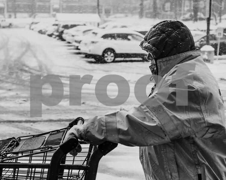 Cart wrangler_web_1100-5877.jpg