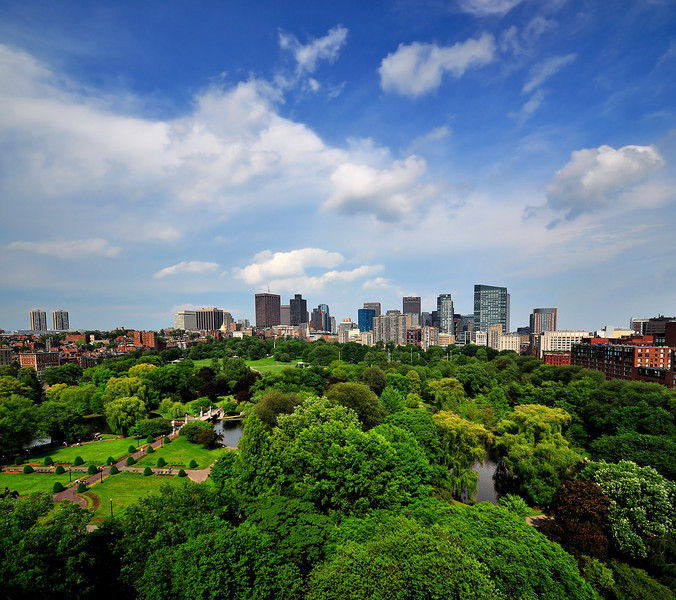 A Wide View Of Boston Public Garden and Boston Skyline.