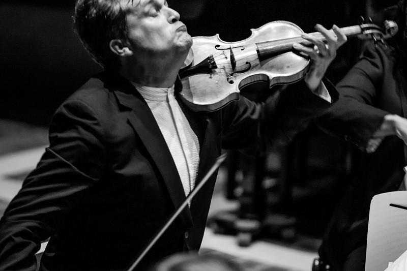 Peter Sheppard Skærved, Kreutzer Quartet