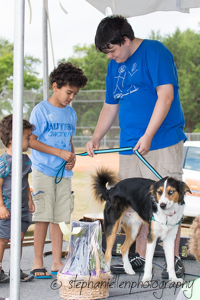 Woofstock_carrollwood_tampa_2018_stephaniellen_photography_MG_8412.jpg