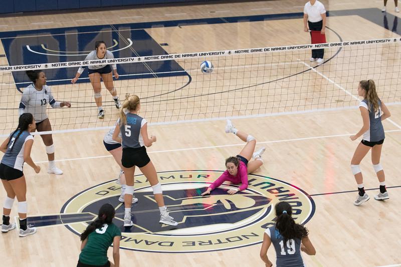 HPU Volleyball-92972.jpg