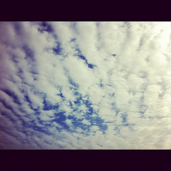 2012-02-06_1328555233.jpg