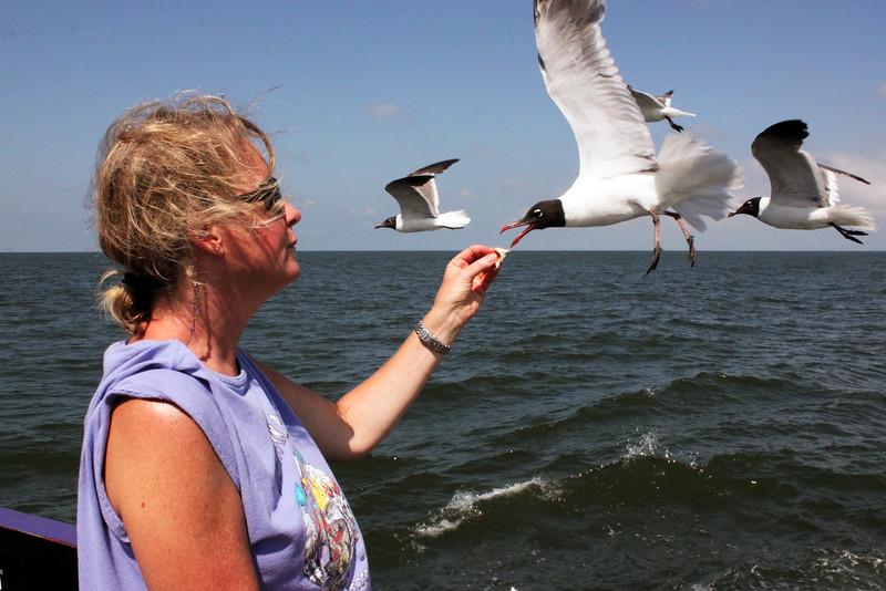 IMG_0290 new Jeanne feeding gulls nc.jpg