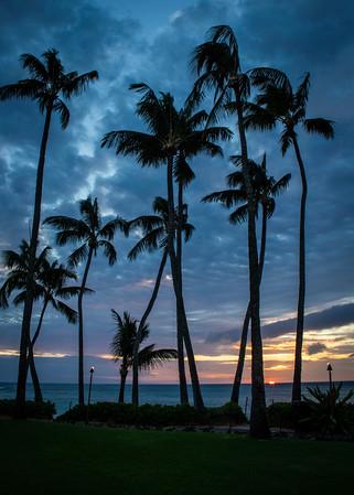 Hawaii Trip - March