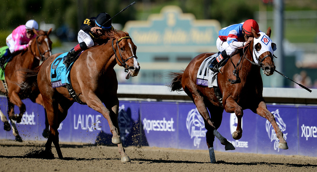 ". Jockey Julien Leparoux atop ""Sweet Lulu\"" (11), right, wins the Filly & Mare Sprint in the sixth race during the Breeders\' Cup at Santa Anita Park in Arcadia, Calif., on Saturday, Nov. 2, 2013.    (Keith Birmingham Pasadena Star-News)"