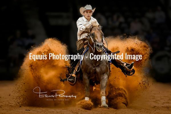 World Equestrian Games - Tryon 2018