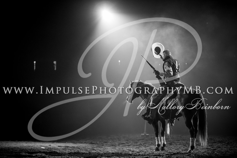Midwest Horse Fair 2018