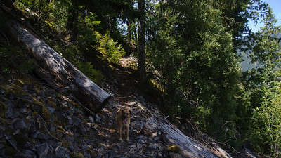 Crater Rim hike