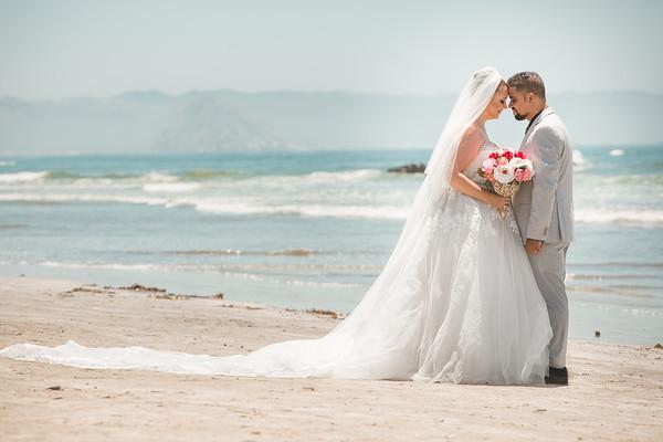 LaDawna & Peyman (Wedding Collection)
