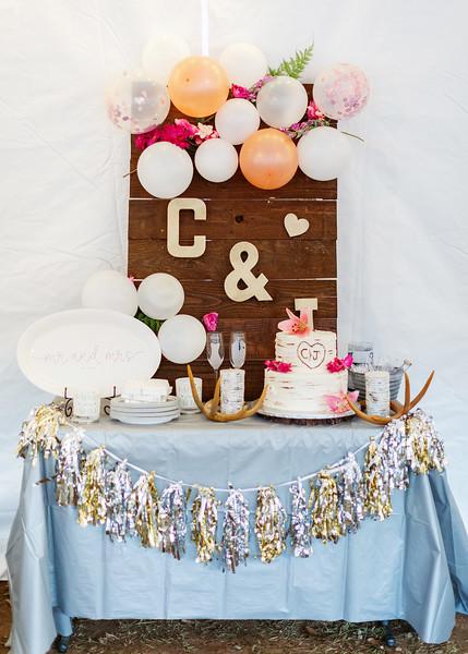 Macheski Fuller Wedding169.jpg