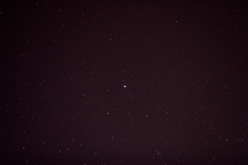 Vega:  Canon 100 mm f2.8 @f3.2 ISO 800 30 sec; Tracking on