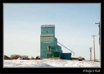 Grain Elevators - Alberta*