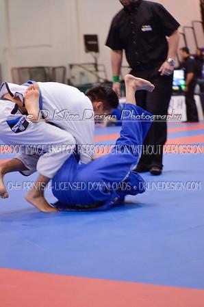 New York BJJ Pro BLUE BELTS 10/25/2014