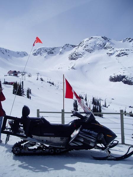 Whistler Ski Area: 8,171 acres = 3.307 hectares