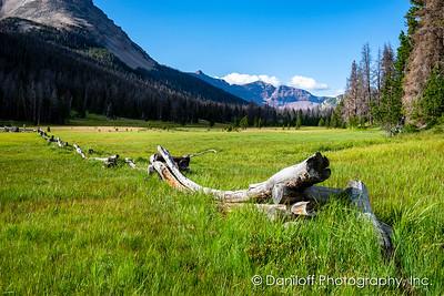 Dead Horse Lake, Uintas, Utah - July 2018