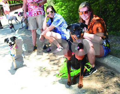 runners-walkers-and-their-dogs-run-for-treats-at-rudman-park