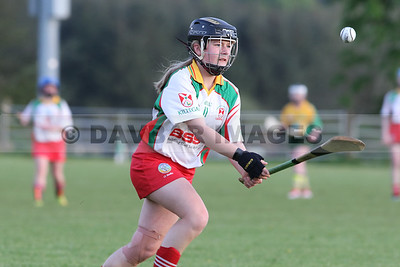 Kiltegan U16 Camogie League 2018
