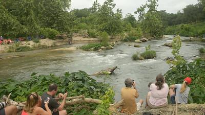 texas Water Safari Bay Videos