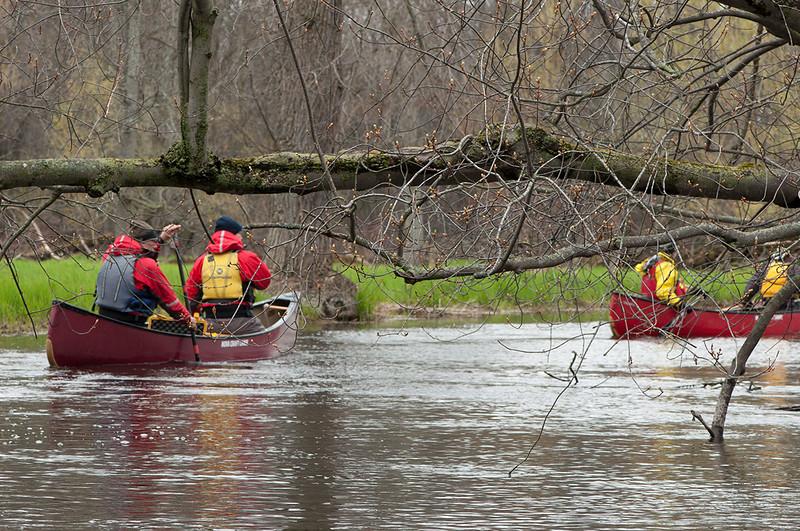 Teeswater-swamp_canoe1.jpg