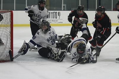 Lake Forest Women's Ice Hockey 2014/2015