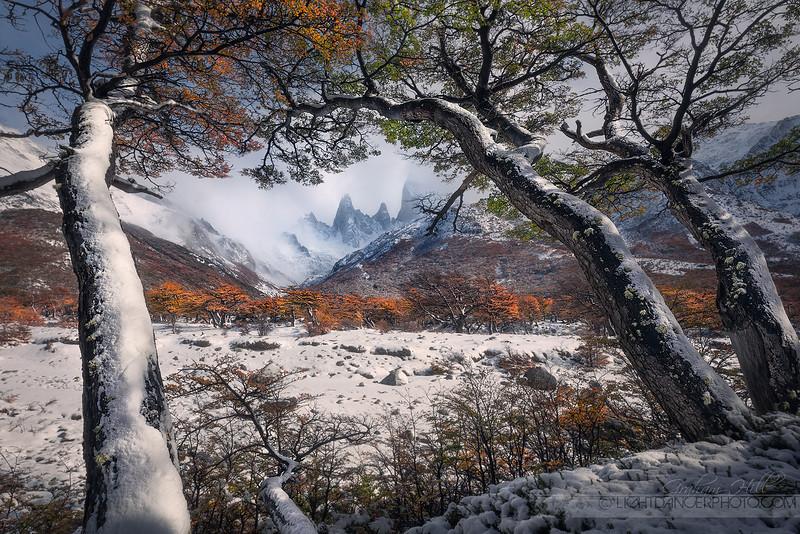 Patagonia - Snow 5.jpg