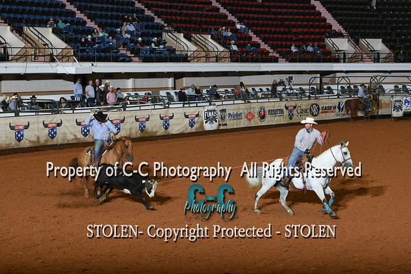 Horse Sale Preview   USTRC Finals 2020 Fort Worth TX