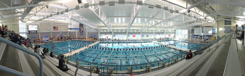 Watkins Glen Diving 11-17-17 (State Final)