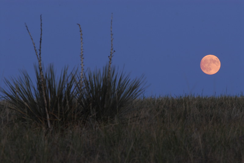 Moon Rise, Draper South Dakota