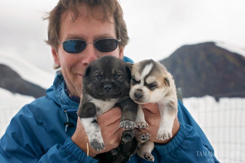Puppies-11-2.jpg