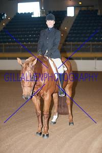 2012 Fall Charity Horse-n-Rider