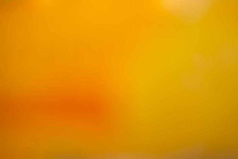 Colour Washes BH5A7062.jpg