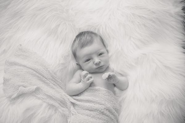 Willis - Newborn