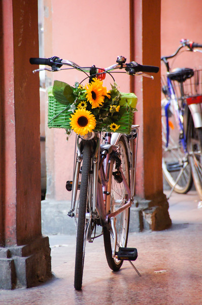Bicycle Decorated With Sunflower In Bologna, Italy, Standing In A Portico