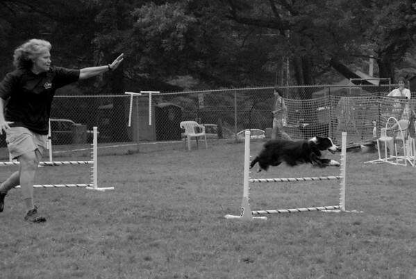 2010-08-22 NADAC Agility Trial Day 2 - St Huberts