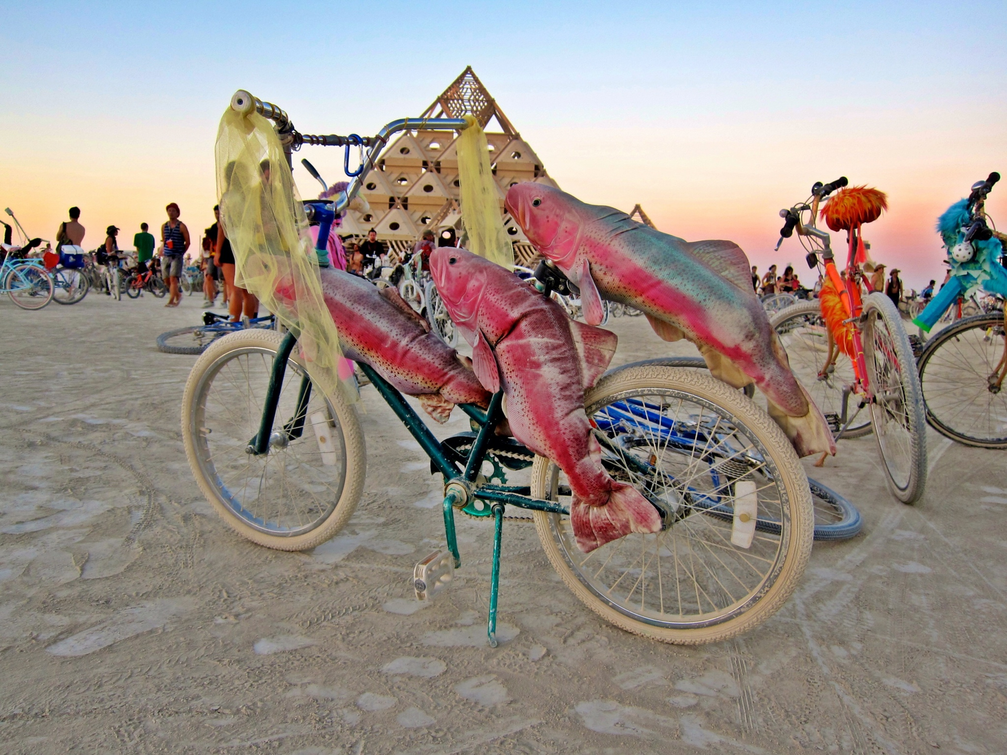 Burning Man Salmon Bicycle
