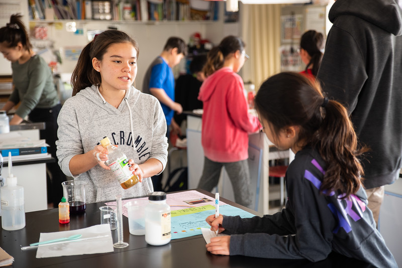 MYP Science Fair-Learning at YIS-ELP_9197-2018-19.jpg