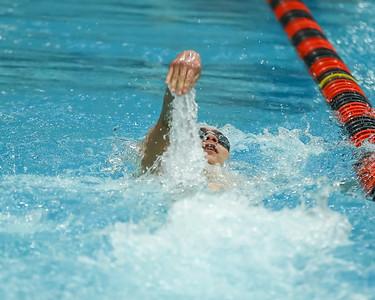 022318 Boys State Swim Meet (GD)