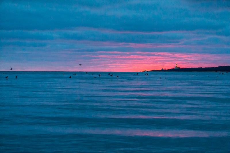 Long Island-107.jpg