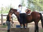 Horseback Riding on Oahu