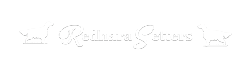 Redhara-Setters.png