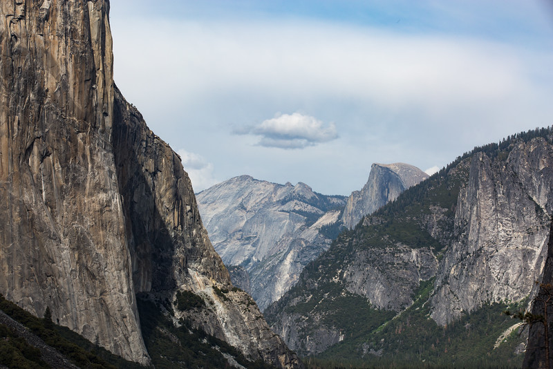 20150504-Yosemite-5D-128A1300.jpg