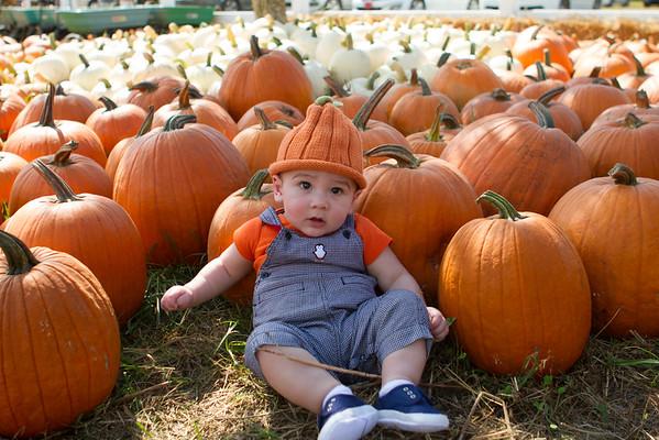 Pumpkin Patch 09-28-14