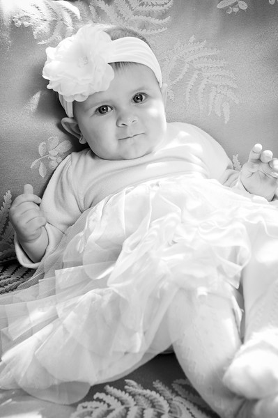Lily at 6 months-4594.jpg