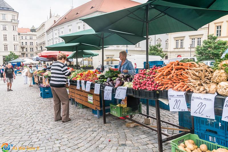 Cabbage-Market-04307.jpg