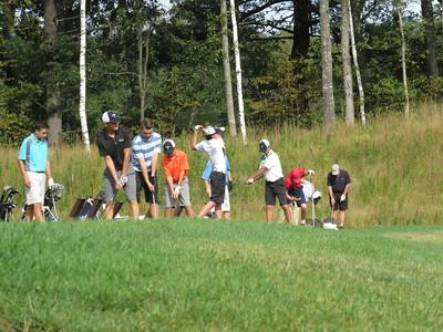 FHS Varsity Golf 2016