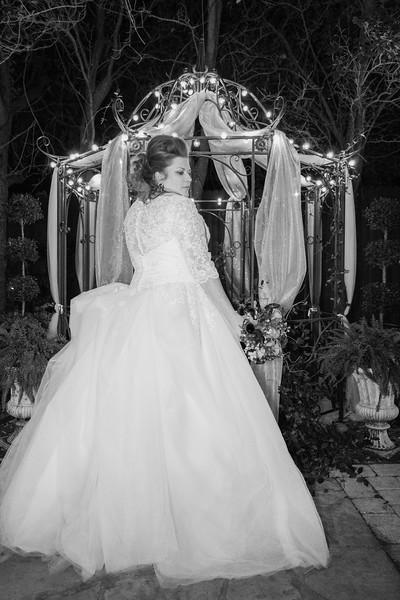 ELP1022 Stephanie & Brian Jacksonville wedding 2571.jpg
