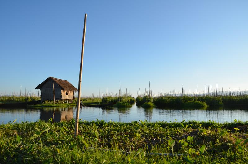 DSC_4453-lake-water-garden.JPG