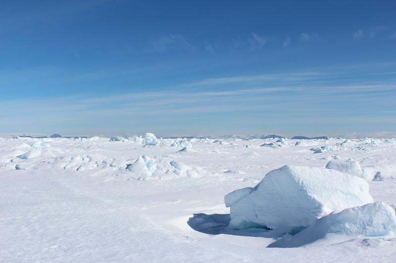 Antarctica 017.JPG