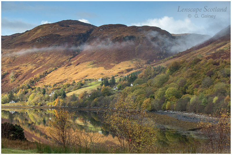 autumn colours, Allt nan Subh, Loch Long